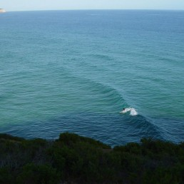 Surftrips, Malibu - Escola de Surf, Gaia, Porto